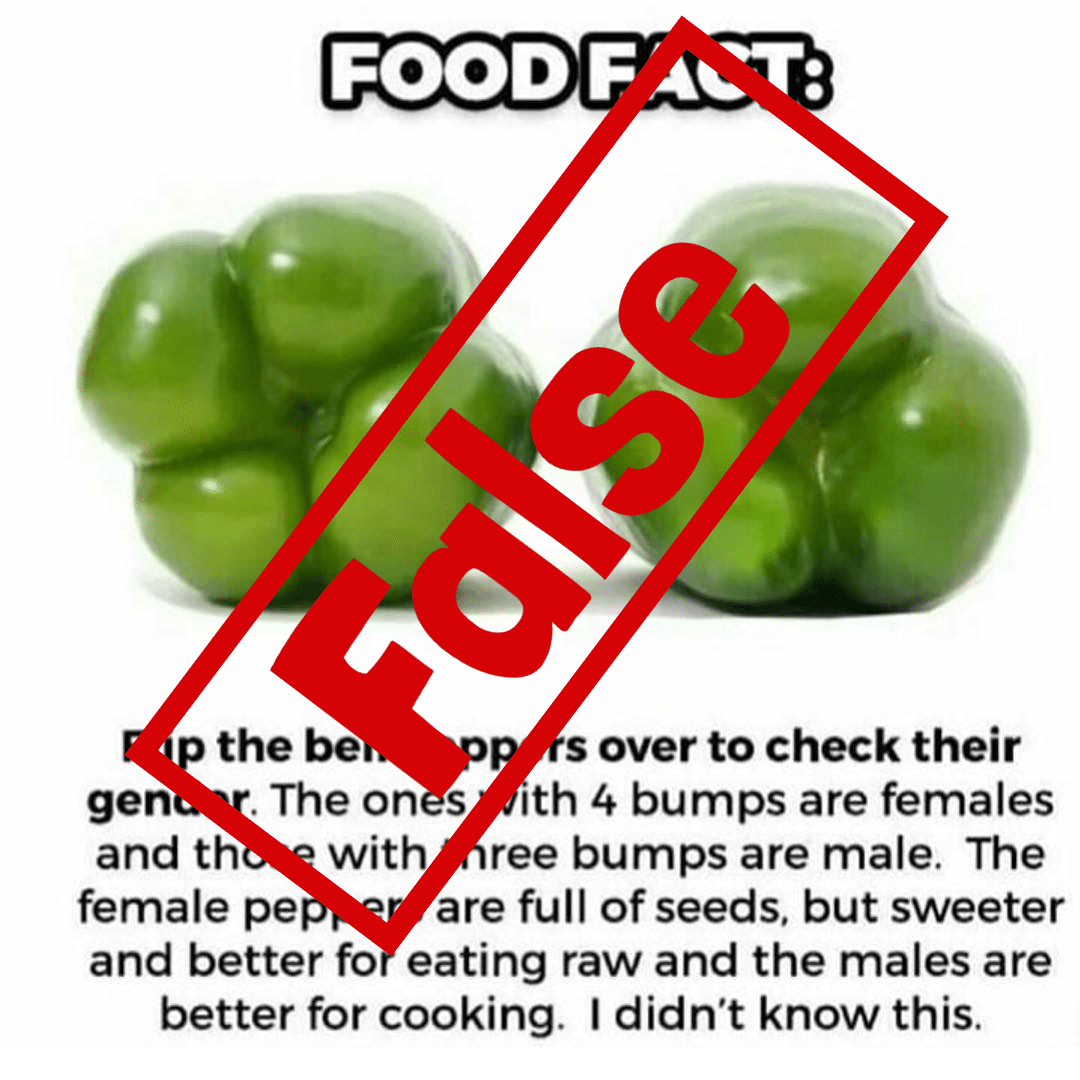 Bell peppers do not have gender.